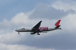 ktaroさんが、新千歳空港で撮影した日本航空 777-246の航空フォト(飛行機 写真・画像)
