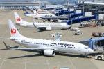Kuuさんが、中部国際空港で撮影した日本航空 737-846の航空フォト(飛行機 写真・画像)