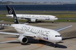 肉食獣さんが、羽田空港で撮影した全日空 777-281の航空フォト(写真)