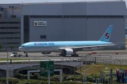 肉食獣さんが、羽田空港で撮影した大韓航空 777-3B5の航空フォト(写真)