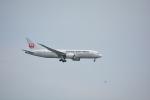 BeyondWorksさんが、羽田空港で撮影した日本航空 787-8 Dreamlinerの航空フォト(写真)