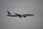 BeyondWorksさんが、羽田空港で撮影したシンガポール航空 777-312/ERの航空フォト(写真)