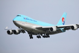 DREAMWINGさんが、成田国際空港で撮影した大韓航空 747-4B5F/SCDの航空フォト(飛行機 写真・画像)