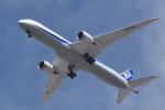 romyさんが、ボーイングフィールドで撮影した全日空 787-9の航空フォト(写真)