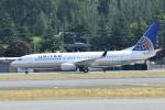 romyさんが、ボーイングフィールドで撮影したユナイテッド航空 737-824の航空フォト(写真)