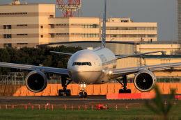 夏奈さんが、成田国際空港で撮影したユナイテッド航空の航空フォト(写真)