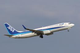 GO-01さんが、小松空港で撮影した全日空 737-881の航空フォト(飛行機 写真・画像)