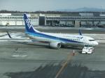 ANA744Foreverさんが、新千歳空港で撮影した全日空 737-881の航空フォト(写真)