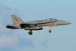 うめやしきさんが、厚木飛行場で撮影したアメリカ海兵隊 F/A-18C Hornetの航空フォト(飛行機 写真・画像)