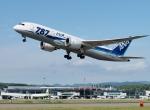 comdigimaniaさんが、函館空港で撮影した全日空 787-8 Dreamlinerの航空フォト(写真)