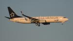 BeyondWorksさんが、羽田空港で撮影した全日空 737-881の航空フォト(写真)
