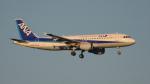 BeyondWorksさんが、羽田空港で撮影した全日空 A320-211の航空フォト(写真)