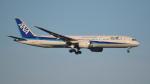 BeyondWorksさんが、羽田空港で撮影した全日空 787-9の航空フォト(写真)