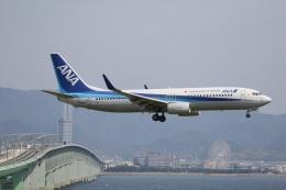 ドラパチさんが、関西国際空港で撮影した全日空 737-881の航空フォト(飛行機 写真・画像)