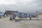 eagletさんが、チノ空港で撮影したprivate P-51D Mustangの航空フォト(写真)