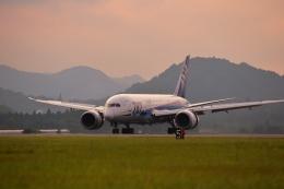 鹿児島のぽりっす♪さんが、鹿児島空港で撮影した全日空 787-8 Dreamlinerの航空フォト(飛行機 写真・画像)