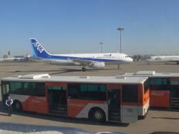 コバトンさんが、羽田空港で撮影した全日空 A320-214の航空フォト(飛行機 写真・画像)