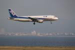 職業旅人さんが、関西国際空港で撮影した全日空 A320-211の航空フォト(写真)