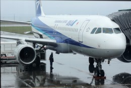 mojioさんが、稚内空港で撮影した全日空 A320-211の航空フォト(飛行機 写真・画像)