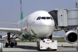 RUNDY!さんが、羽田空港で撮影したエバー航空 A330-302Xの航空フォト(飛行機 写真・画像)