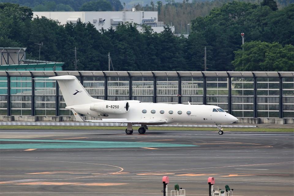 T.Sazenさんの金鹿航空 Gulfstream Aerospace G350/G450 (G-IV) (B-8250) 航空フォト