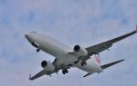 サボリーマンさんが、高知空港で撮影した日本航空 737-846の航空フォト(写真)