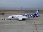 りんたろうさんが、羽田空港で撮影した全日空 787-8 Dreamlinerの航空フォト(写真)