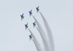 じーく。さんが、旭川駐屯地で撮影した航空自衛隊 T-4の航空フォト(写真)