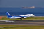 ピリンダさんが、中部国際空港で撮影した全日空 737-881の航空フォト(写真)