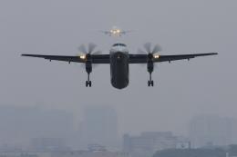 RUNDY!さんが、伊丹空港で撮影したANAウイングス DHC-8-402Q Dash 8の航空フォト(飛行機 写真・画像)