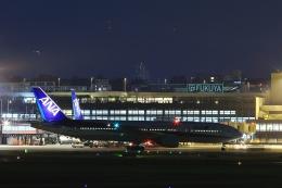 RUNDY!さんが、伊丹空港で撮影した全日空 777-281の航空フォト(飛行機 写真・画像)