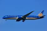 げんこつさんが、成田国際空港で撮影したベトナム航空 787-9の航空フォト(写真)