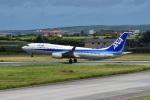 tsubasa0624さんが、宮古空港で撮影した全日空 737-881の航空フォト(写真)