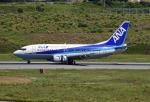 tsubasa0624さんが、新石垣空港で撮影したANAウイングス 737-54Kの航空フォト(飛行機 写真・画像)