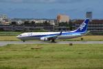 tsubasa0624さんが、宮古空港で撮影した全日空 737-881の航空フォト(飛行機 写真・画像)