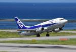 tsubasa0624さんが、新石垣空港で撮影したANAウイングス 737-5L9の航空フォト(写真)
