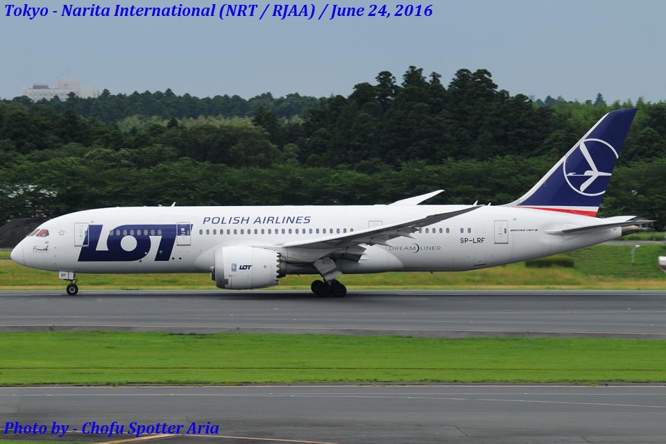 Chofu Spotter AriaさんのLOTポーランド航空 Boeing 787-8 Dreamliner (SP-LRF) 航空フォト