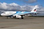 北の熊さんが、新千歳空港で撮影したバンコクエアウェイズ A319-131の航空フォト(写真)