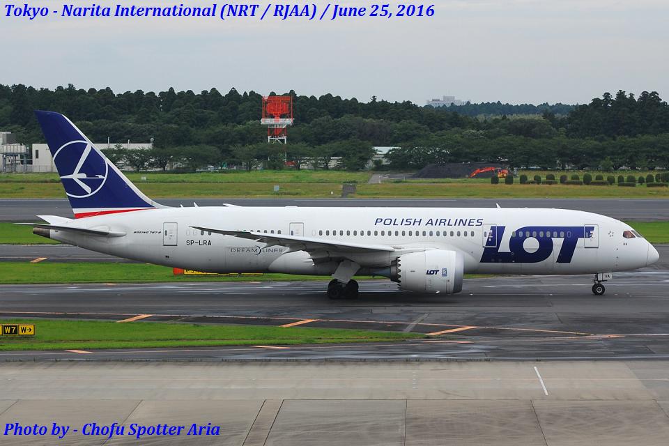 Chofu Spotter AriaさんのLOTポーランド航空 Boeing 787-8 Dreamliner (SP-LRA) 航空フォト
