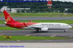 Chofu Spotter Ariaさんが、成田国際空港で撮影した深圳航空 737-87Lの航空フォト(写真)