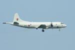 うめやしきさんが、厚木飛行場で撮影した大韓民国海軍 P-3CK Orionの航空フォト(飛行機 写真・画像)