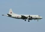 じーく。さんが、厚木飛行場で撮影した大韓民国海軍 P-3CK Orionの航空フォト(飛行機 写真・画像)
