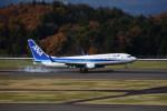 kumagorouさんが、福島空港で撮影した全日空 737-881の航空フォト(写真)