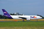トロピカルさんが、成田国際空港で撮影したフェデックス・エクスプレス A300B4-622R(F)の航空フォト(写真)