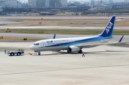 ハピネスさんが、伊丹空港で撮影した全日空 737-881の航空フォト(飛行機 写真・画像)