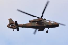 500さんが、自宅上空で撮影した陸上自衛隊 OH-1の航空フォト(飛行機 写真・画像)