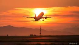 Cottonpanさんが、松山空港で撮影したジェットスター・ジャパン A320-232の航空フォト(写真)