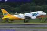 Chofu Spotter Ariaさんが、成田国際空港で撮影したセブパシフィック航空 A319-112の航空フォト(飛行機 写真・画像)