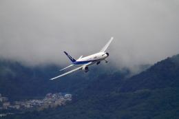 LeeFuuさんが、伊丹空港で撮影した全日空 777-281の航空フォト(写真)