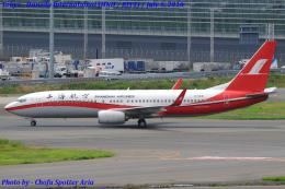 Chofu Spotter Ariaさんが、羽田空港で撮影した上海航空 737-86Nの航空フォト(飛行機 写真・画像)